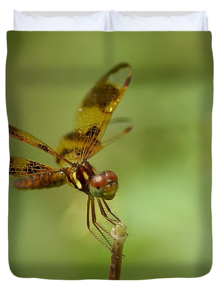 Duvet Cover featuring the photograph Dragonfly 2 by Olga Hamilton