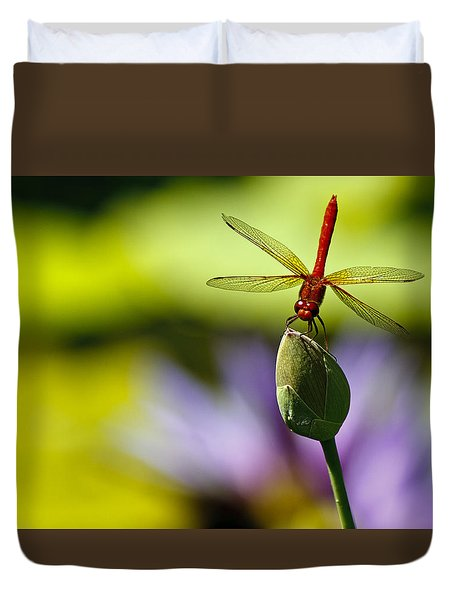 Dragonfly Display Duvet Cover