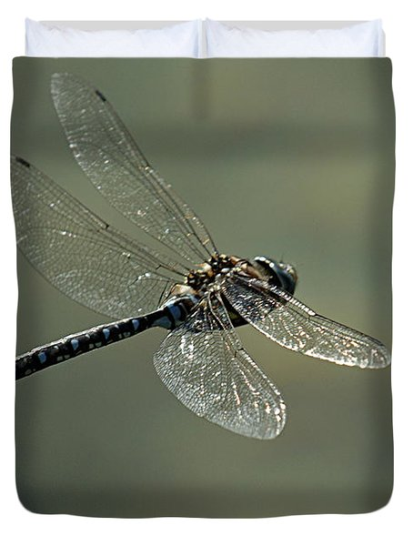 Dragonfly In Flight Duvet Cover by Bob Christopher