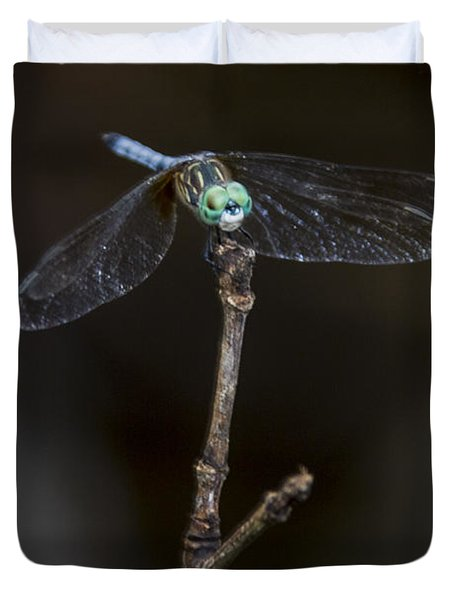 Dragonfly On Branch Duvet Cover
