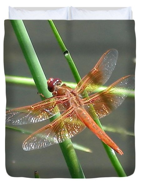 Dragonfly Orange Duvet Cover