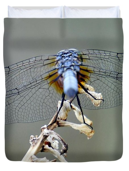 Dragonfly Wing Details II Duvet Cover by Lilliana Mendez