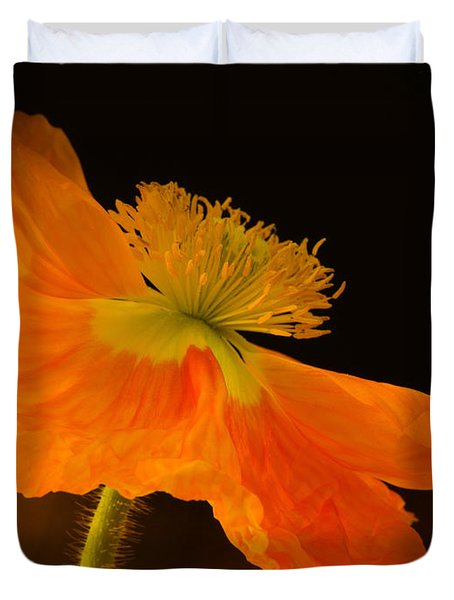 Dramatic Orange Poppy Duvet Cover by Don Schwartz