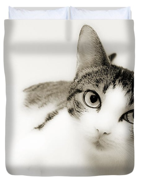 Dreamy Cat 2 Duvet Cover