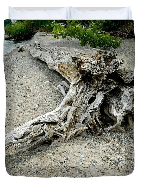 Duvet Cover featuring the photograph Driftwood At Lake Erie by Kathy Barney