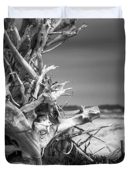 Driftwood At Race Point Duvet Cover by Brian Caldwell