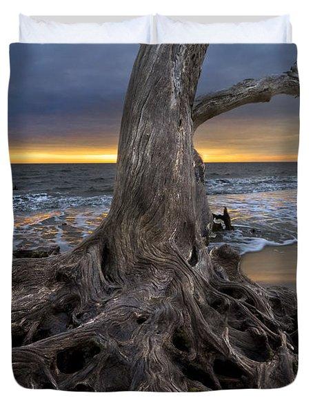 Driftwood On Jekyll Island Duvet Cover by Debra and Dave Vanderlaan
