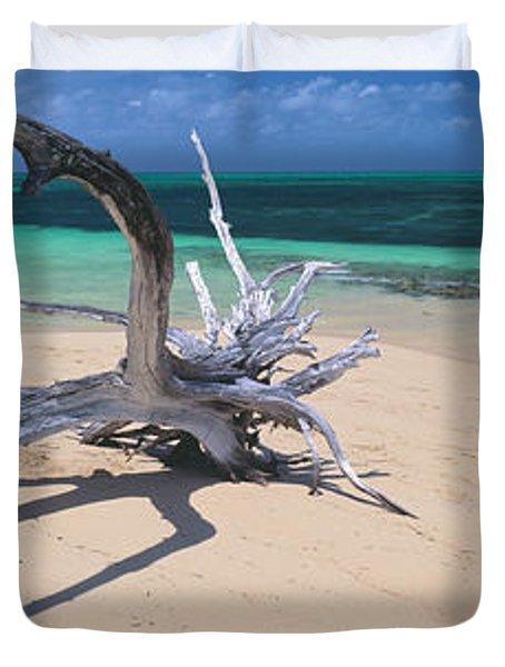 Driftwood On The Beach, Green Island Duvet Cover by Panoramic Images