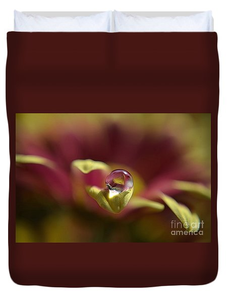 Duvet Cover featuring the photograph Drop On Petal by Michelle Meenawong
