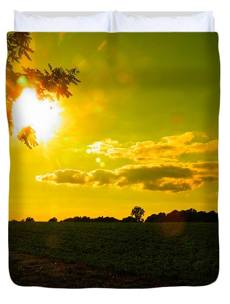 Duck Flying Low Cloud 2 Duvet Cover by Nick Kirby