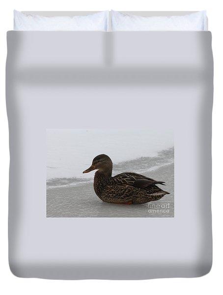 Duck On Ice Duvet Cover by John Telfer