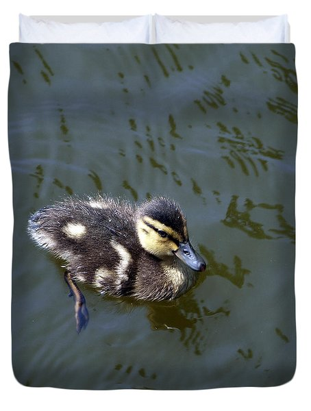 Duckling Exploration Duvet Cover