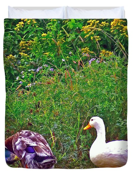Ducks By The Road In Gros Morne National Park-newfoundland-canada Duvet Cover