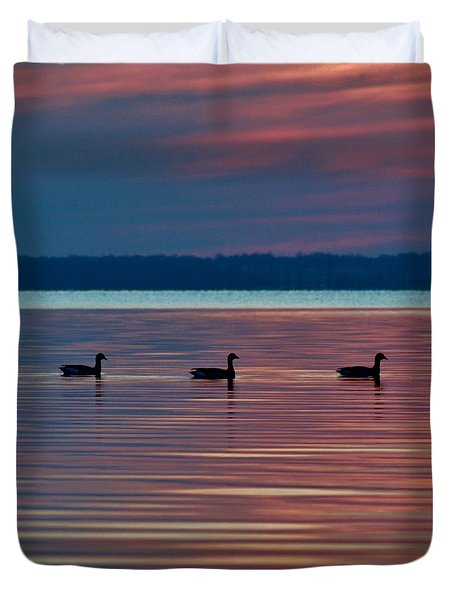 Ducks In A Row Duvet Cover