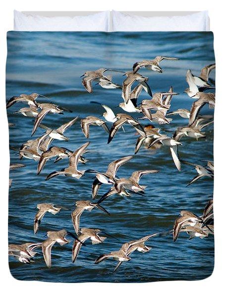 Dunlins In Flight Duvet Cover