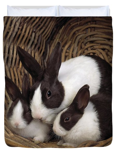 Dutch Rabbit With Young Duvet Cover by E A Janes