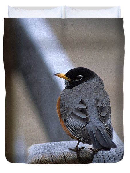 Duvet Cover featuring the photograph Early Bird by Sharon Elliott