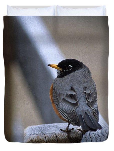 Early Bird Duvet Cover by Sharon Elliott