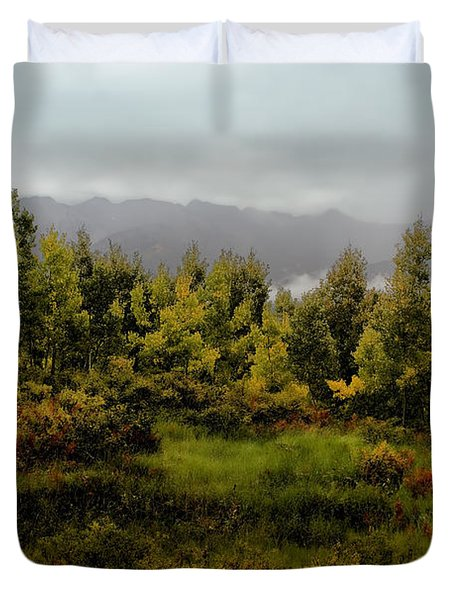 Duvet Cover featuring the photograph Early Fall On Kebler Pass by Ellen Heaverlo