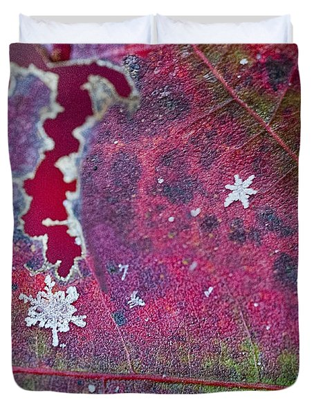 Early Fall Snow Flakes Duvet Cover by Dan Friend