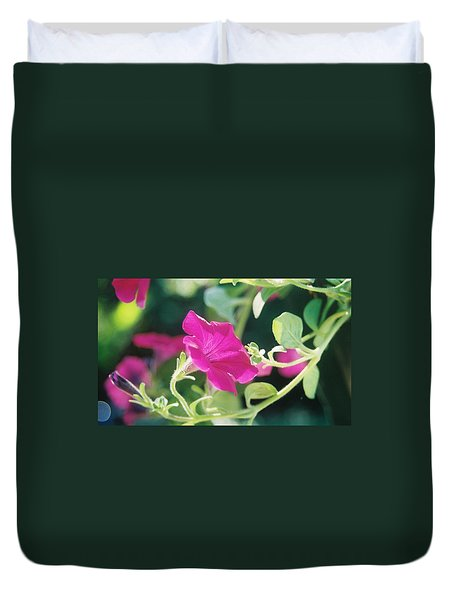 Duvet Cover featuring the photograph Early Morning Petunias by Alan Lakin