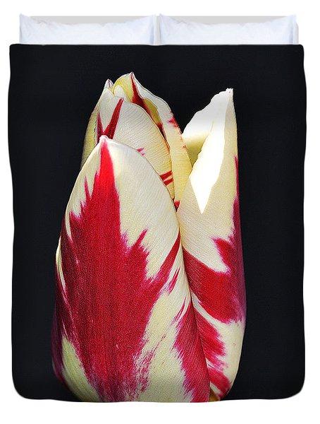 Easter Greetings - Twinkle Tulip Duvet Cover