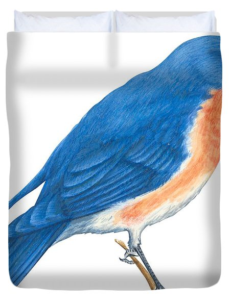 Eastern Bluebird Duvet Cover