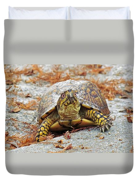 Duvet Cover featuring the photograph Eastern Box Turtle by Cynthia Guinn