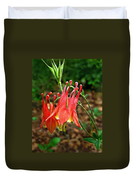Wild Eastern Columbine Duvet Cover by William Tanneberger