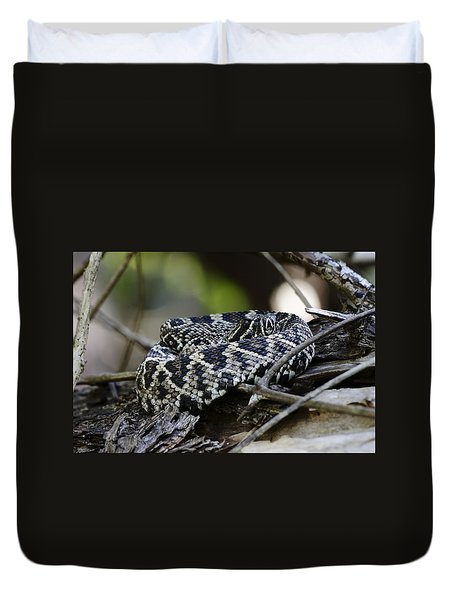 Eastern Diamondback-1 Duvet Cover