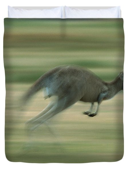 Eastern Grey Kangaroo Female Hopping Duvet Cover by Ingo Arndt