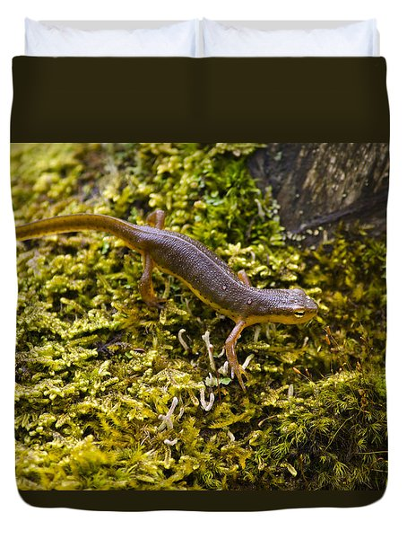 Eastern Newt Aquatic Adult Duvet Cover by Christina Rollo