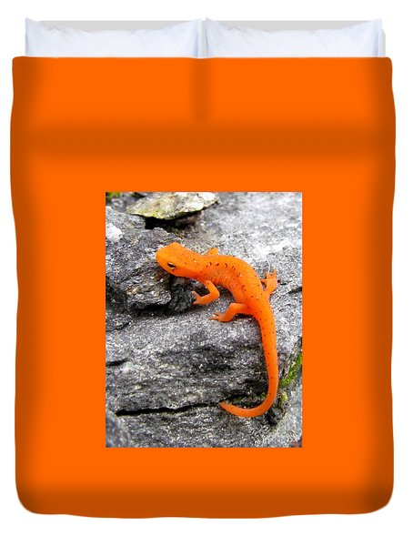 Orange Julius The Eastern Newt Duvet Cover