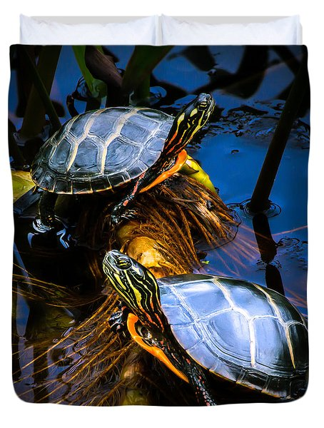 Eastern Painted Turtles Duvet Cover by Bob Orsillo