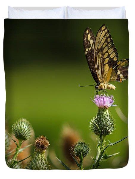 Eastern Swallowtail Butterfly II Duvet Cover