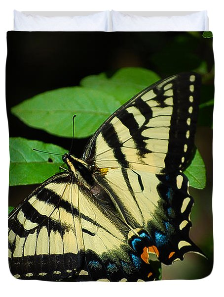 Eastern Tiger Swallowtail Duvet Cover by Bianca Nadeau