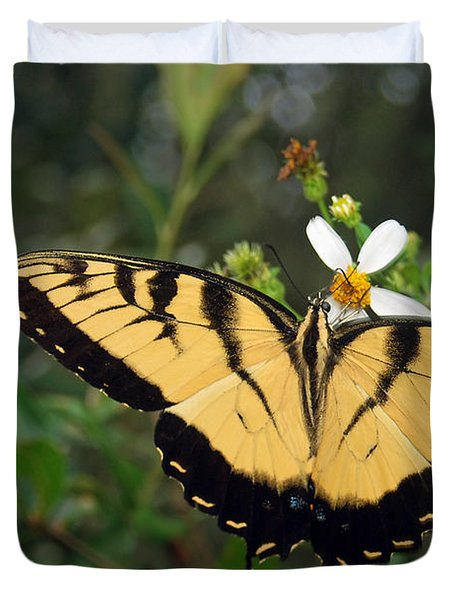 Eastern Tiger Swallowtail Duvet Cover