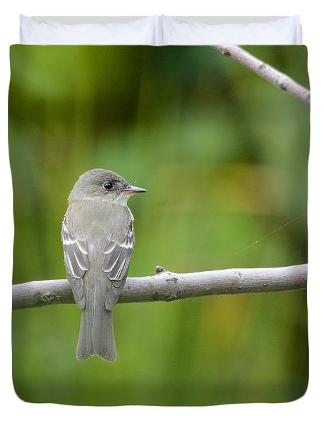 Eastern Wood Pewee Duvet Cover