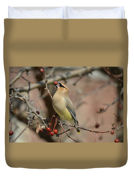 Cedar Waxwing In Winter Duvet Cover