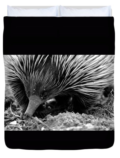 Duvet Cover featuring the photograph Echidna by Miroslava Jurcik