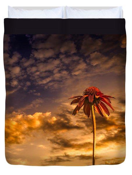 Echinacea Sunset Duvet Cover by Bob Orsillo