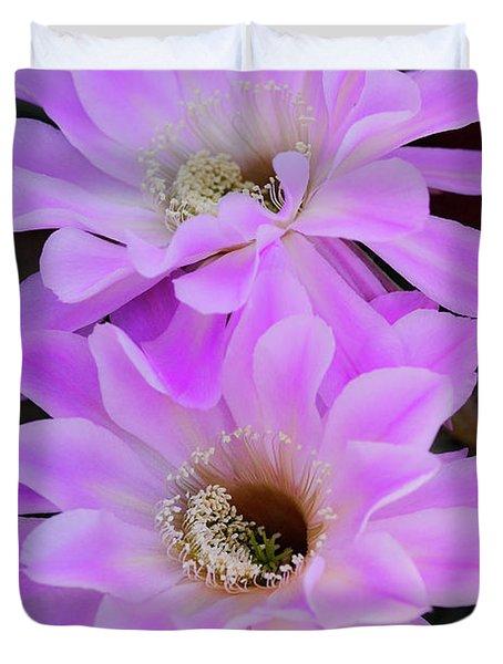 Echinopsis Aurea Duvet Cover by Saija  Lehtonen