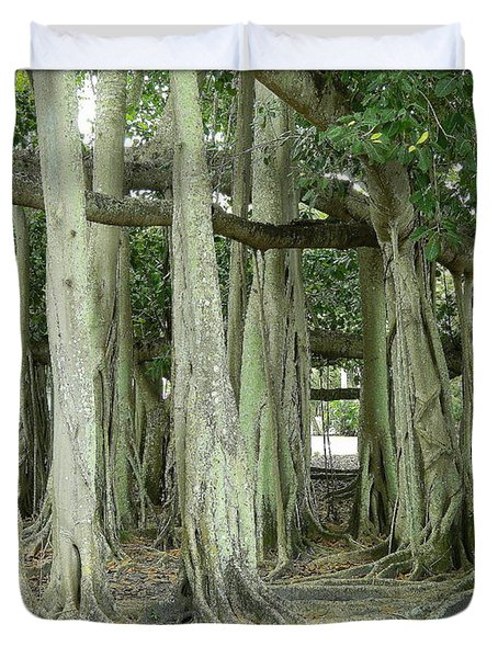 Duvet Cover featuring the photograph Edison Banyan Trees by Kathy Barney