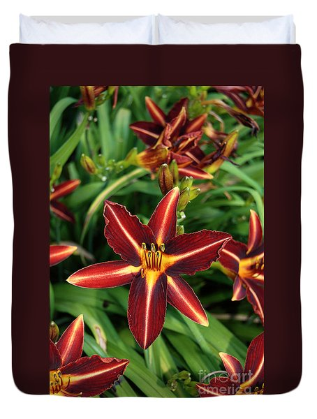 Duvet Cover featuring the photograph Eggplant Escapade Daylily by Eva Kaufman