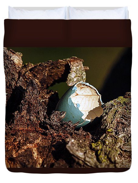 Eggs Of Nature 1 Duvet Cover
