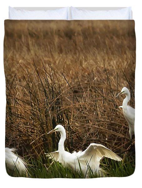 Egret Landing Duvet Cover by Belinda Greb