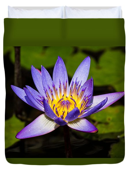 Egyptian Blue Water Lily  Duvet Cover