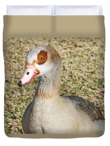 Egyptian Goose  Duvet Cover by Shoal Hollingsworth