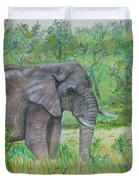 Elephant At Kruger Duvet Cover by Caroline Street