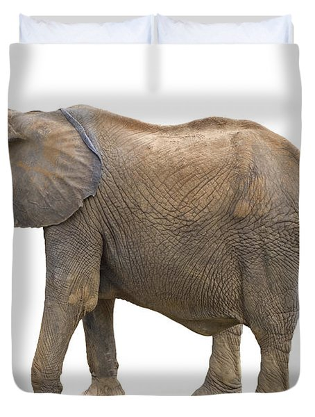Duvet Cover featuring the photograph Elephant by Charles Beeler